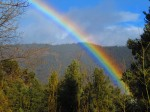 A brief break from the weather, perfect rainbow!