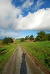My 'driveway'