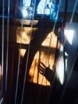 Through the harp strings